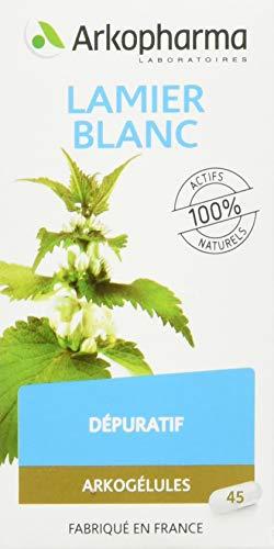 Arkopharma - Phytothérapie Standard - Arkogélules - Lamier Blanc -  Actifs 100% naturels - Flacon de 45 Gélules