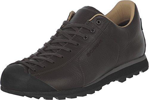 Scarpa Mojito Basic GTX Shoes Dark Brown Schuhgröße EU 45 2020 Schuhe