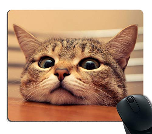 Gaming Mouse Pad Custom,Curious Cute Cat Look at You with Eager Eyes on Table Customized Rectangle Non-Slip Rubber Mousepad Gaming Mouse Pad