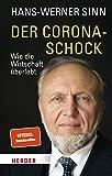Hans-Werner Sinn: Der Corona-Schock