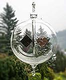 Lauschaer Glaskunst Crookes radiomètre pour accrocher claires - sphère 80 mm