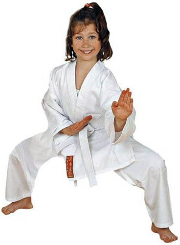 Karateanzug HAYASHI