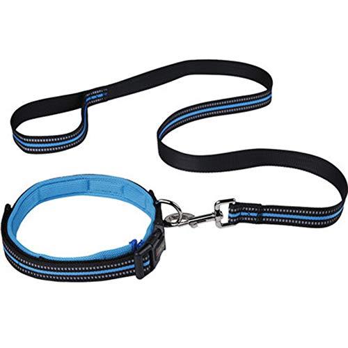 Echte leren ketting hondenriem slip collar huisdier Walking Lead echt leer grote hond tractietouw voor kleine middelgrote grote honden, blauw