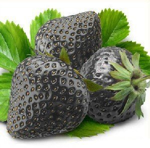 Black Seeds Strawberry F1, pack en vrac, 100 graines / Pack, Tasty non-ogm Graines Strawberry Bonsai # KK009