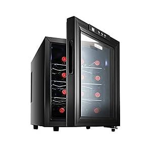 hanzeni Refroidisseur À Vin Réfrigérateur - Réfrigérateur À Vin Rouge Blanc Réfrigérateur Comptoir Refroidisseur À Vin 12 Bouteilles - Autonome - Bouton Tactile
