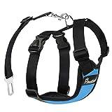 Pawaboo Pettorina di Sicurezza per Cani, Imbracatura Regolabile per Auto Viaggio Cintura con Clip per Cintura Auto, Taglia M - Blu