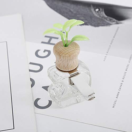 RGHG Perfume de Coches Clip Hierba Olor del ambientador de Aire Auto de la decoración Salida de la Botella vacía Vent Ornamento Regalo de Accesorios Sin perfumes (Color Name : Apple)