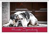 Hunde-Spruchreif (Wandkalender 2020 DIN A3 quer): Ein Kalender für Hundefreunde (Monatskalender, 14 Seiten ) (CALVENDO Tiere)