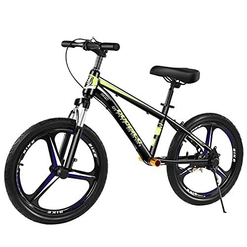 ERLAN Bicicletas sin Pedales Bicicleta de Equilibrio para Niños Grandes 10 11 12 Años Arriba, Bicicleta de Entrenamiento Sin Pedales con Freno y Ruedas de 22 Pulgadas, Marco de Acero (Color : Green)