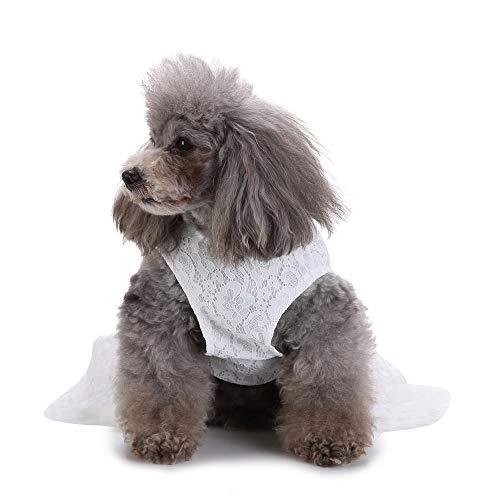 Modow Huisdier Hond Bruidsjurk Kleding Vest Sundress, Elegante Kant Huisdier Kleding voor Hond Jurk Bruiloft Kleding Rokken, Leuke Puppy Kleding voor Kleine en Middelgrote Honden & Katten.