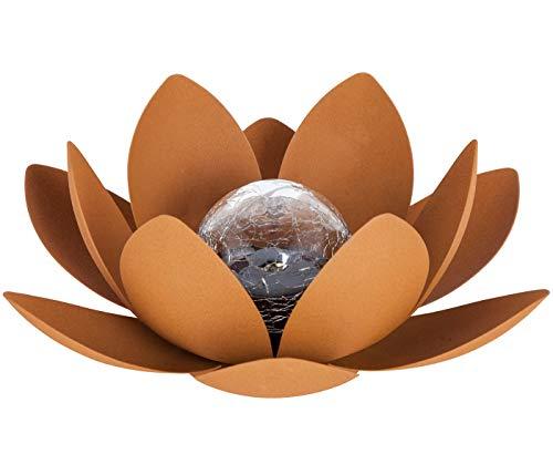 Dehner Dekofigur Solarleuchte Lotus Rostock, Ø 27 cm, Höhe 11.5 cm, Metall/Glas, kupfer