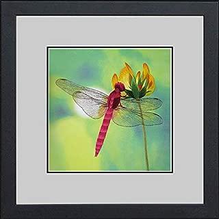 King Silk Art Handmade Embroidery Magenta Dragonfly 33019