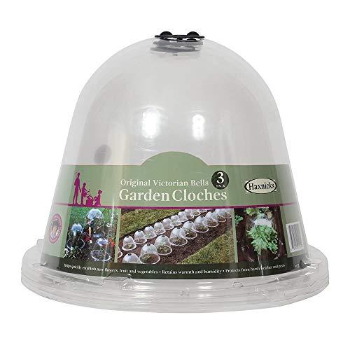 Haxnicks Bell 050101 - Campanas originales para calentar el suelo del jardín y cultivar plantas, transparente (paquete de 3)