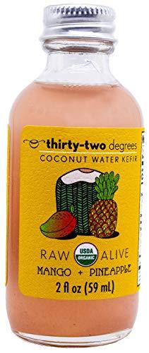 Organic, Raw, Vegan Coconut Water Kefir Shots (Mango + Pineapple)