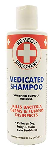 Remedy + Recovery Medicated Shampoo for Dogs, Veterinary Formula, Kills Bacteria, Germs & Fungus, Disinfects, Relieves Dry, Itchy Skin Problems, 8 oz