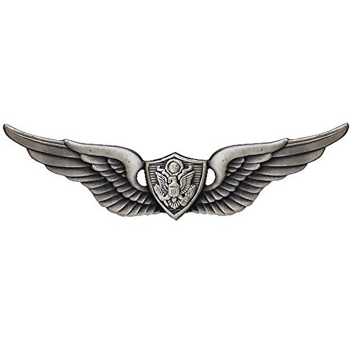 Basic Aviation Army Crewman Wings Pin Oxidized, Silver, One Size