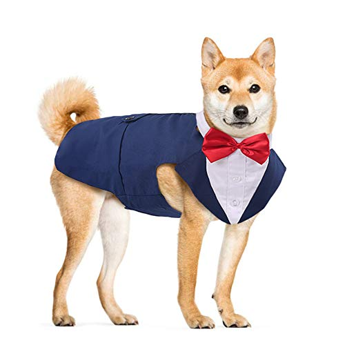 DORA BRIDAL Formal Dog Tuxedo for Medium Large Dogs, Labrador Pet Wedding Party Suit Outfit with Detachable Bowtie Collar Neckerchief Bandana, Dress-up Halloween Costumes Handsome Elegant Cosplay