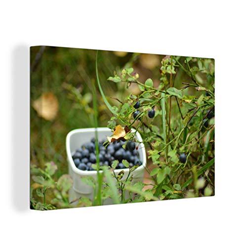 Canvas Schilderijen - Vers geplukte bessen van een blauwe bessenstruik - 150x100 cm - Wanddecoratie - canvas met 2cm dik frame