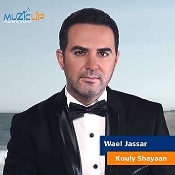 Kouly Shayaan