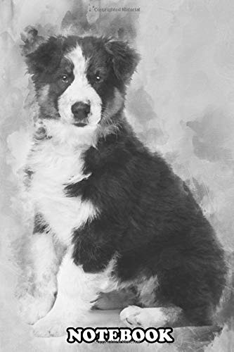Notebook: Australian Shepherd Puppy 3 Months Old Sitting And Look , Journal for Writing, College Ruled Size 6