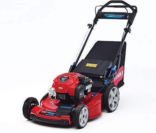 Toro 20965 Rasenmäher Lawn Mower Benzin