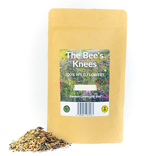 Bees & Butterflies Wild Flower Meadow Seed Mix, Includes High Colour Poppy Seeds & Cosmos, Easy to...