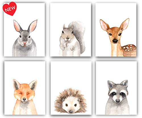 Designs by Maria Inc. Nursery Decor Watercolor Art Posters | Set of 6 Woodland Animal Portraits (Unframed) 8x10 Prints