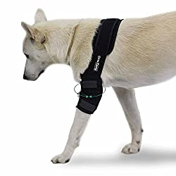 Ortocanis Elbow Protector for Left and Right Leg, 4 Sizes, Color Black, for Dogs with osteoarthritis, Ligament Injuries, Arthritis and ED