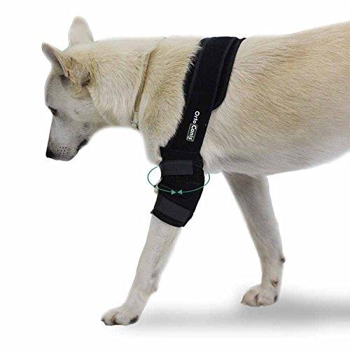 Ortocanis Ellbogenschoner für Hunde - Bein recht - größe L
