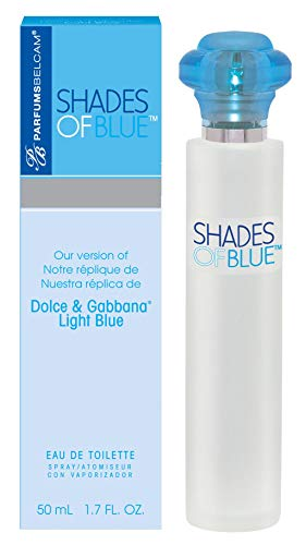 Belcam Shades of Blue for Women Version of Dolce and Gabbana, Light Blue, 6.4 Ounce