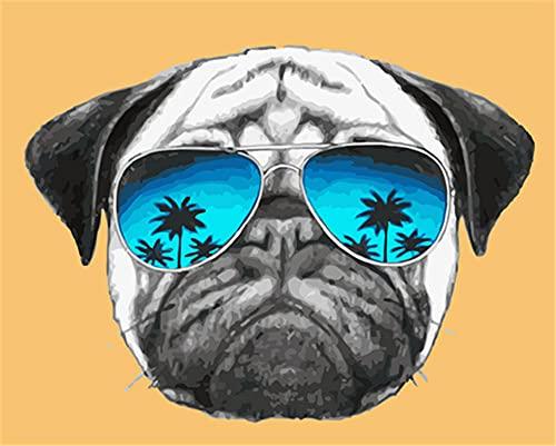 N\A Pinturas con Numeros para Adultos DIY Perro Gafas Animal Pintura Kit For Mayores Avanzada Niños Joven Pintar Numeros