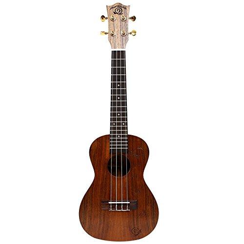 Lumaca ukulele chitarra per principianti piccolo strumento per inviare un set completo di accessori ukc-486