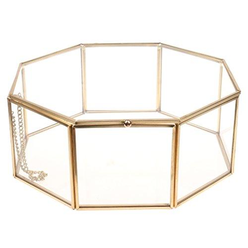 MagiDeal Geometrisches Glas Terrarium Box Glas Sukkulente Pflanzen Pflanzgefäß Deko mit Deckel - 24.5x24.5x10 cm