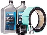 Kohler GM62346 Maintenance Kit for 12/14 kW Residential Generators