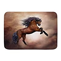 NIESIKKLA バスマット、黒い馬、マット滑り止め ソフトタッチ 丸洗い 洗濯 台所 脱衣場 キッチン 玄関やわらかマット 45x 75cm