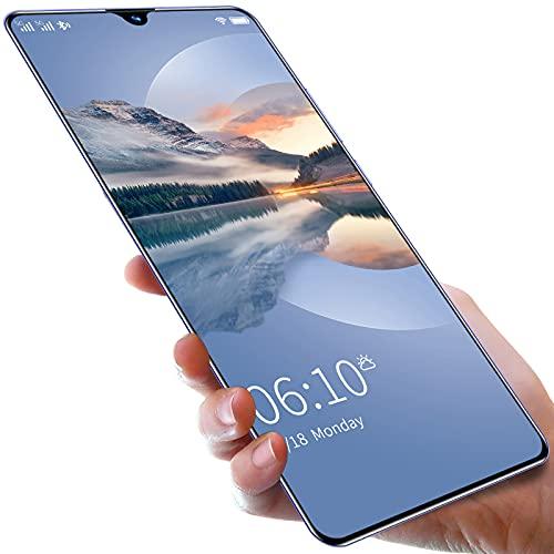 YouthRM Android Smart Phone 48MP 4G 5G Supporto Riconoscimento delle Impronte Digitali Sblocco Facciale Schermo IPS da 6,8 Pollici + Display LCD 512 GB + 8 GB 8800 mAh MT40RS,Black