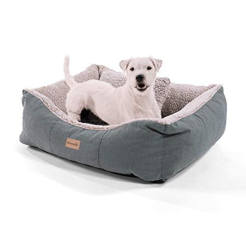 brunolie Emma Kleiner Hundekorb in Braun, waschbar, hygienisch und rutschfest, luftiges Hundebett mit Kissen zum Kuscheln, Größe S (59 x 67 x 20 cm)