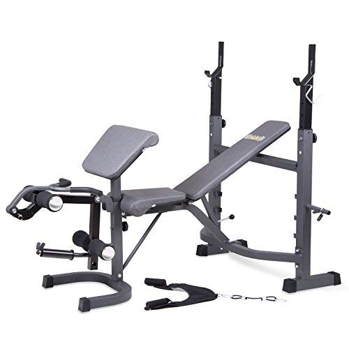 Multifunctional Fitness Machine Strength Training Olympic Weight Benches Workout Station Adjustable Dumbbell Bench Weightlifting Bed with Preacher Curl Leg Developer and Crunch Handle