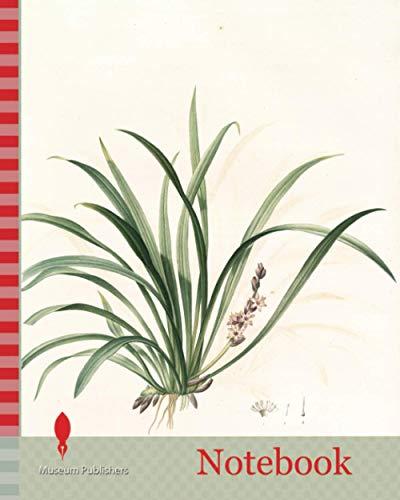 Notebook: Sansevieria carnea, Reineckia carnea, Redouté, Pierre Joseph, 1759-1840, les liliacees, 1802 - 1816