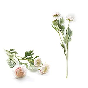 Fvnicbb Beautiful British Noble Royal Family Artificial Ranunculus Asiaticus Silk Flowers 3 Heads Dew Lotus Decoration Fake Flower phragmites Grass (Color : Champagne Flower)