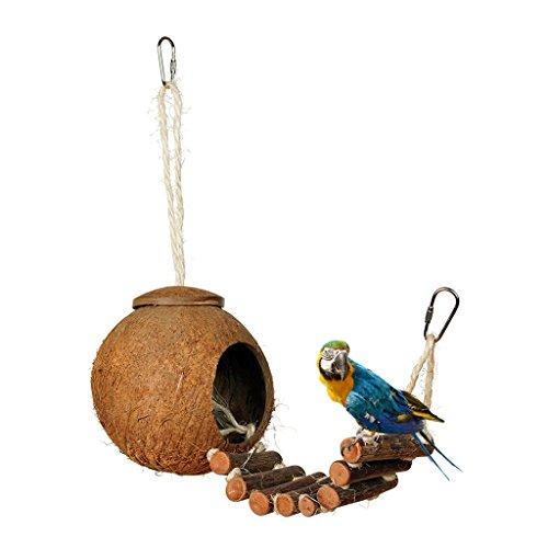 Brucelin Vogelnest aus Kokosnuss aus Naturholz mit Leiter für Käfig, Spielzeug, Wellensittich, Innendekoration