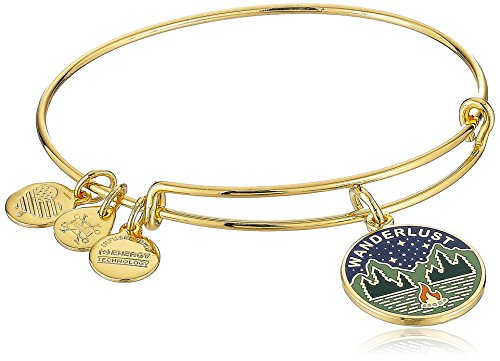 Alex and Ani Words are Powerful, Wanderlust Bangle Bracelet