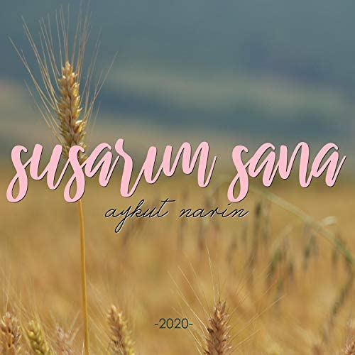 Aykut Narin