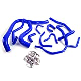 Silicone Radiator Coolant Hose Kit Clamps Compatible For HONDA ACCORD CB7 F22A F20A 1990 1991 1992 1993 Blue