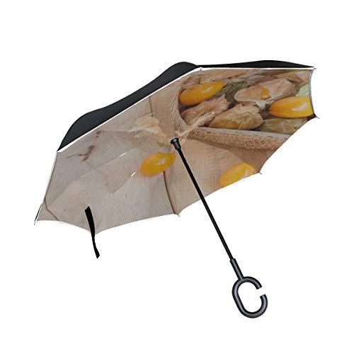 Doppellagige umgekehrte Klappstühle mit Regenschirm Frischer reifer Goldener Kap Stachelbeer Damen Klappschirm Klappschirm Kompakter winddichter UV-Schutz für Regen mit C-förmigem Griff