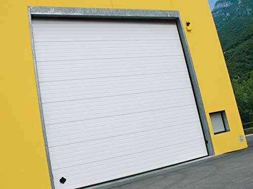 Puerta seccional industrial Dock (3750 x 3500 mm de altura, blanca)