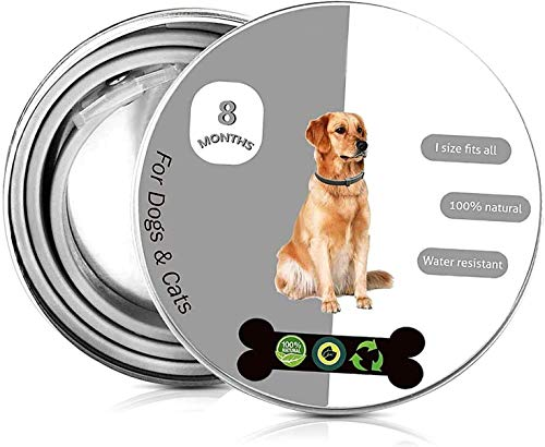 OMZGXGOD Collar Antiparasitos Perros/Gatos contra Pulgas,Garrapatas y Mosquitos