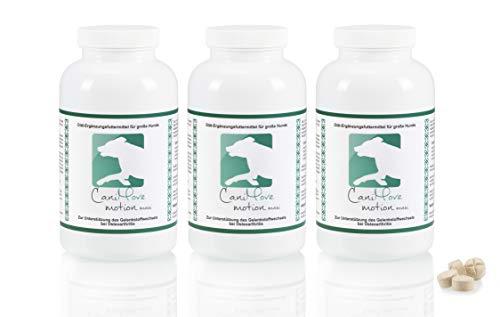 CaniMove motion maxi Dreierpack (300 Gelenktabletten für große Hunde) zur Unterstützung des Stoffwechsels von Gelenken und abhängiger Sehnen, Muskeln und Nerven mit vielen aktiven Inhaltsstoffen