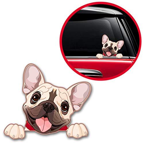 Biomar Labs® 1 x Vinyl Aufkleber Autoaufkleber Sticker Dog Hund Französische Bulldogge French Bulldog B 232