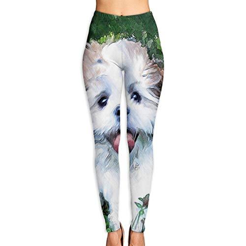 AAAshorts Puppy On Meadow - Pantalones de yoga impresos para mujer, cintura alta, leggings de entrenamiento